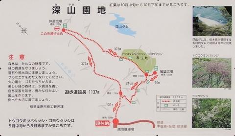 Miyama 20160810_00.JPG