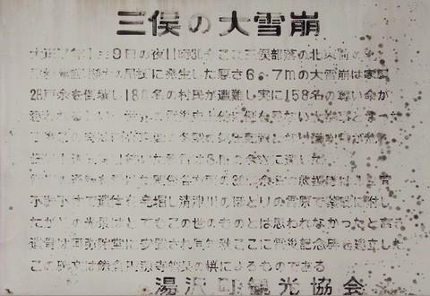 Mitsumata 20160406_05.JPG