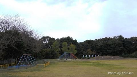 R0020523 (2).JPG